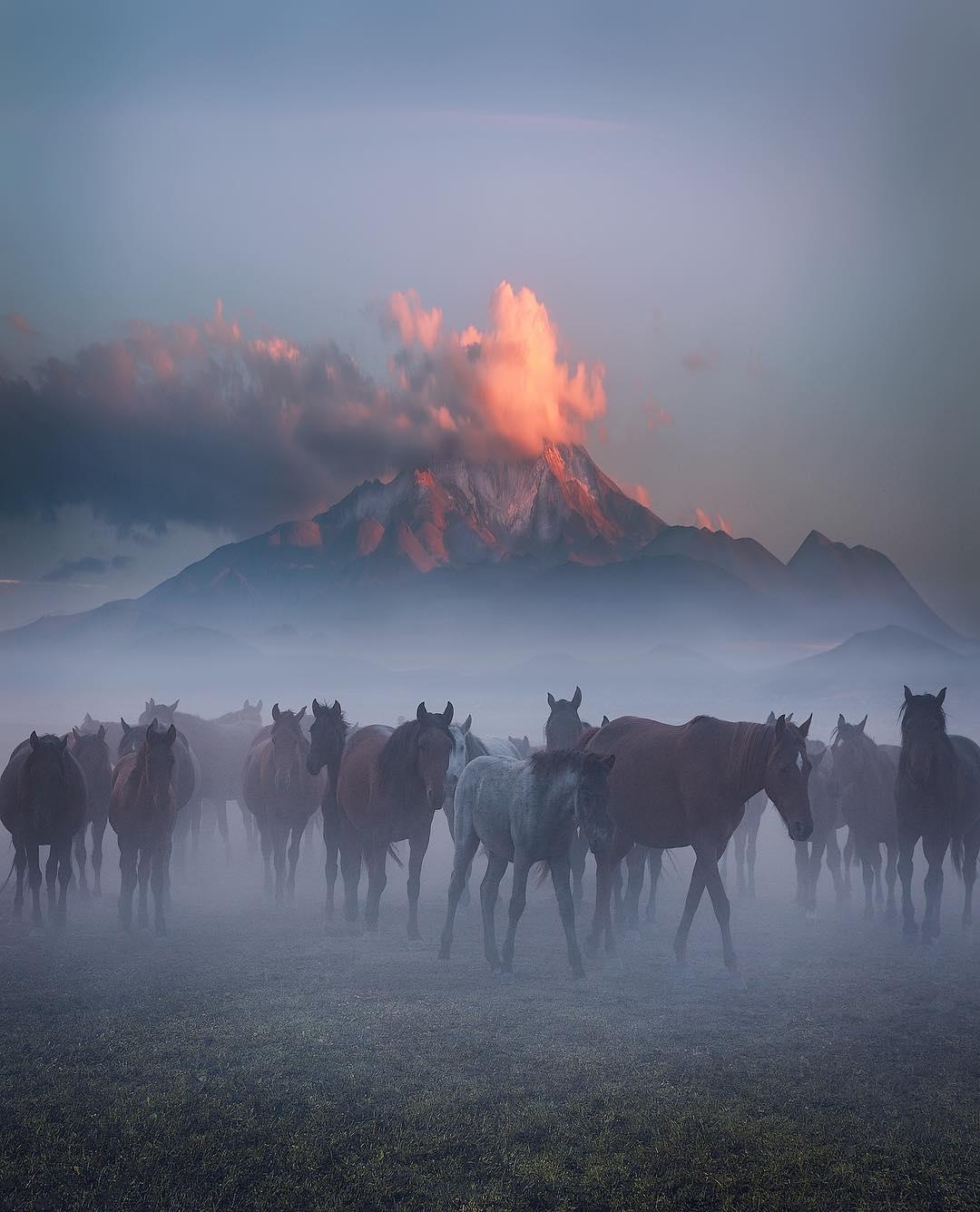 Incredible Photography Cuma Cev - photogrist | ello