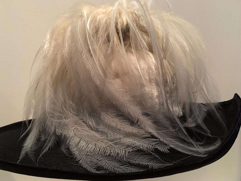 fine feathers art [hat Daily Ph - moosedixon | ello