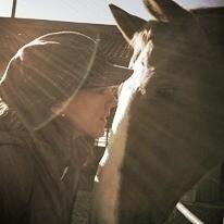 art, photography, horse, horselovers - sarah-aurelie | ello