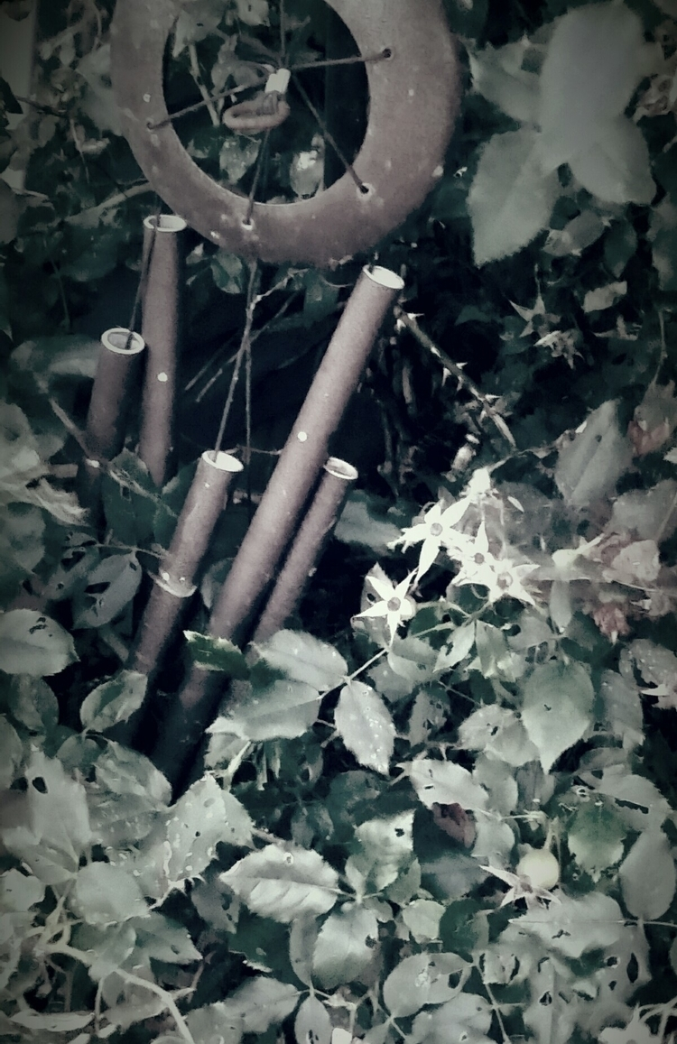 Country Chimes - wind, windchimes - poetic1 | ello