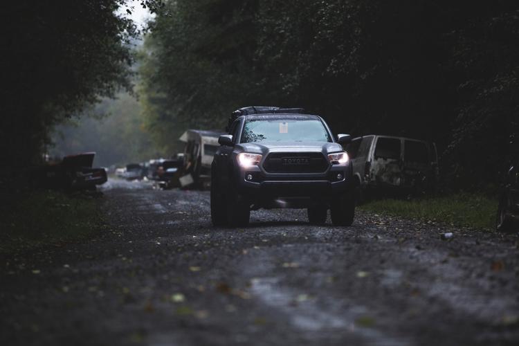 Moody shots adventure woods sho - dirtycactus | ello