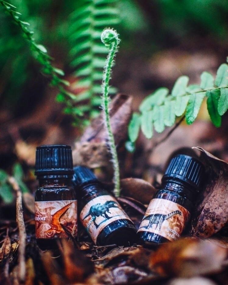 Nocturne Alchemy artisan perfum - theredolentmermaid | ello