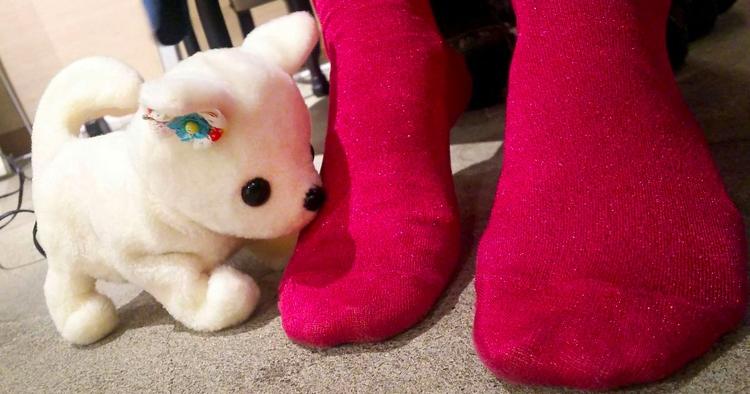 Worried smelly feet? robot dog  - bonniegrrl   ello