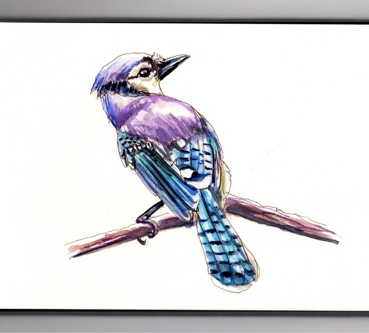 Watching Birds  - doodlewashclub - doodlewash | ello