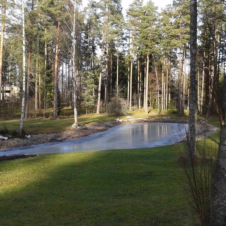 :evergreen_tree:Spegeldammen Sk - skogskyrkogardar | ello