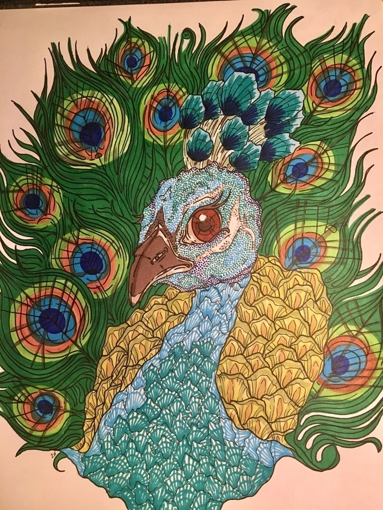 bad peacock!!!! home today hope - laurenkeresey | ello