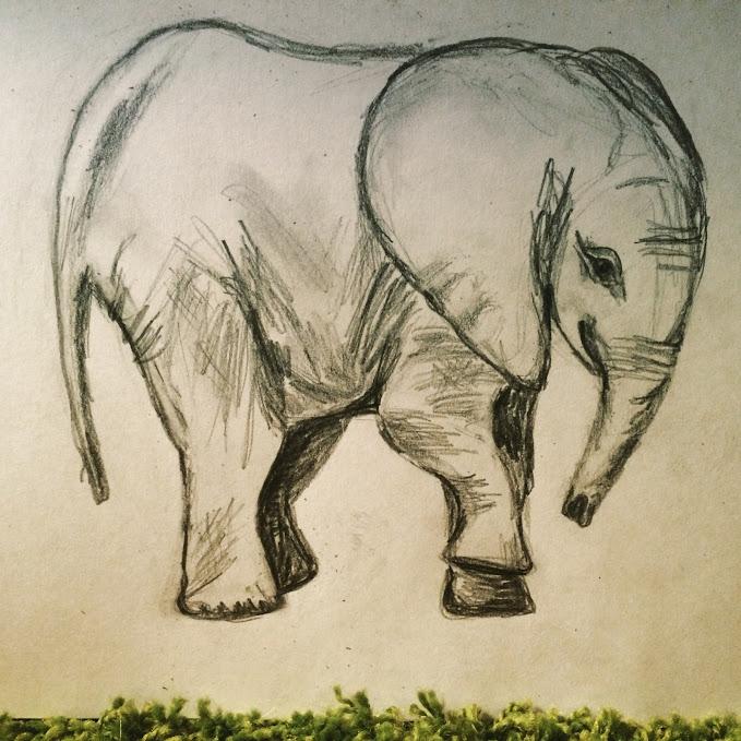 elephante - charcoal - helenaugusta | ello