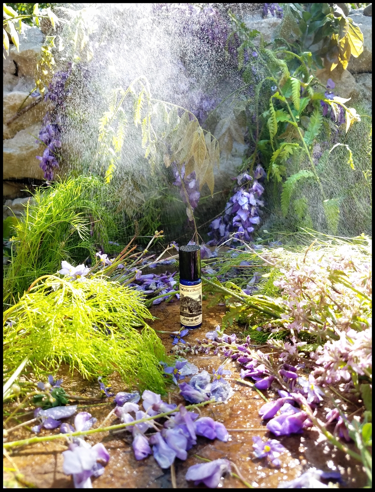 RAIN 5 ml Perfume Lilac, Wister - solsticescents | ello