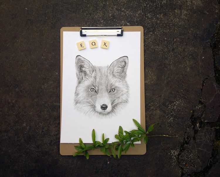 fox, handdrawn, pencil, art, artprint - natmack | ello