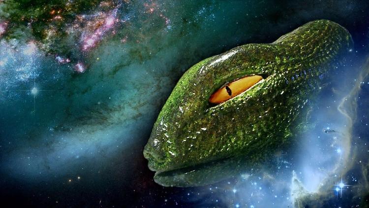 ¿Tienen los reptilianos bases s - codigooculto | ello