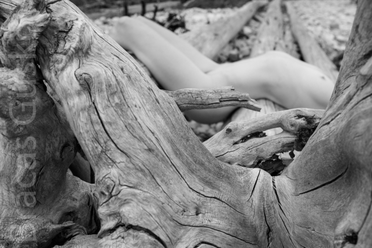 Woman log - nude, woman, tree, BW - bracasguskov   ello