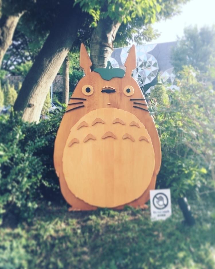 bet Totoro - words, quotes, movie - ahsheegrek   ello
