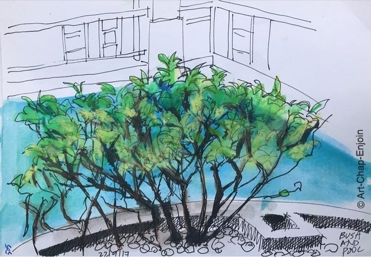 - Bush pool quick doodle workin - artchapenjoin | ello