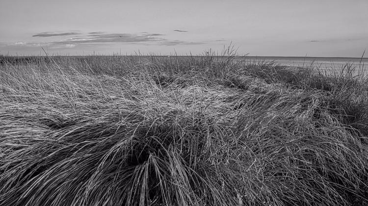 struggle landscape photographer - photografia | ello