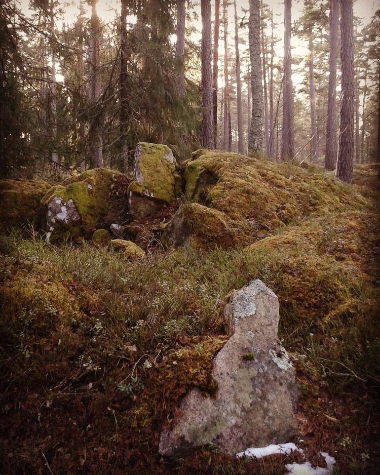 Inte alla platta stenar på Skog - skogskyrkogardar | ello