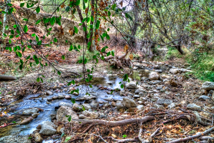 landscape, Limekiln Canyon Park - ellomaggie | ello