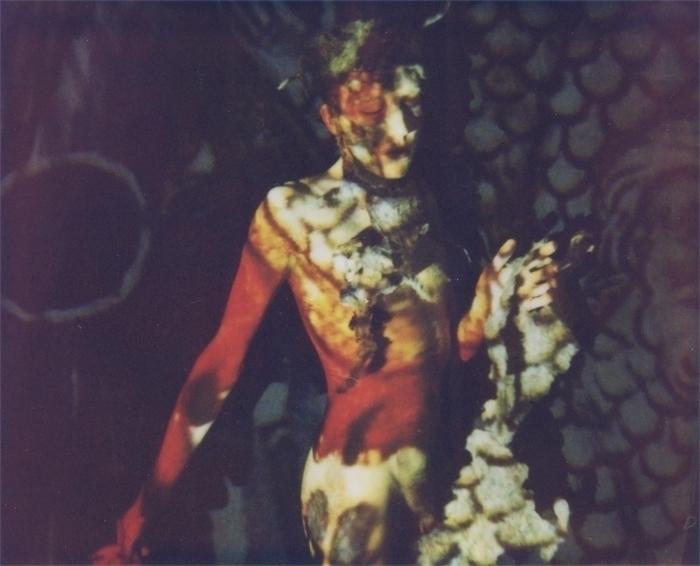 portrait nude polaroid spectra - jauer | ello