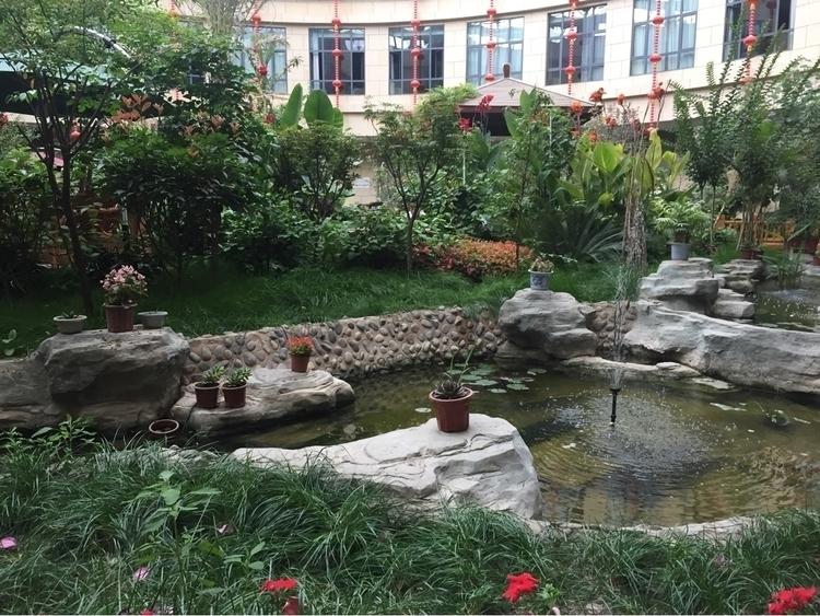 beautiful garden fancy hotel - coolphotochic182 | ello