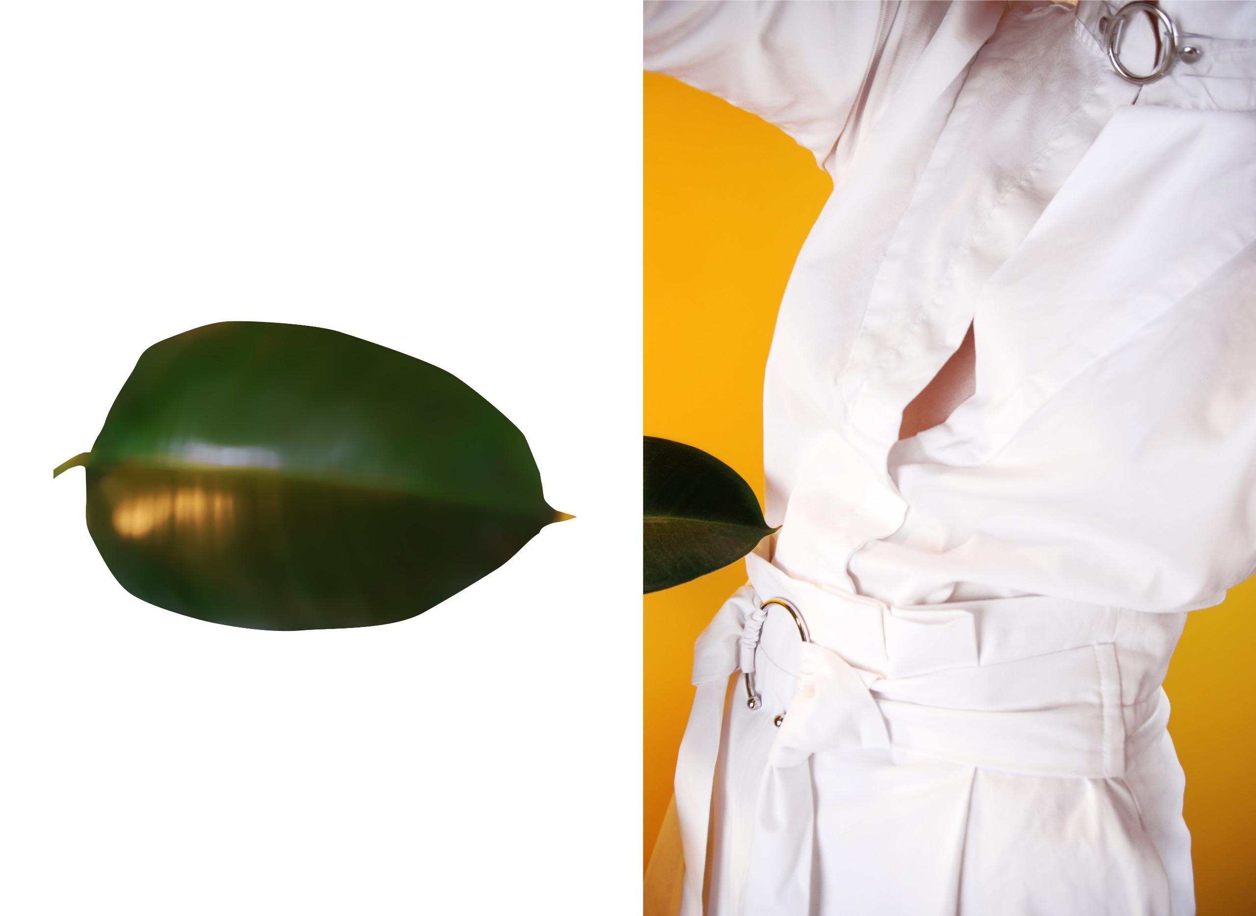 Zdjęcie podzielone jest na dwie części, z lewej strony widzimy kształt liścia, a z prawej fragment postaci ubranej na biało, na żółym tle.