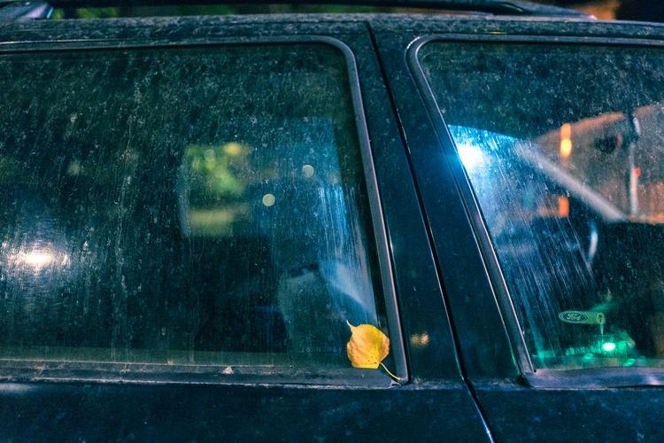 Autumn - alexanderstanishev | ello