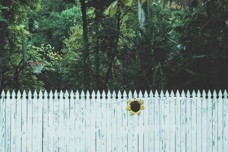 white picket fence. basketball  - iangarrickmason | ello