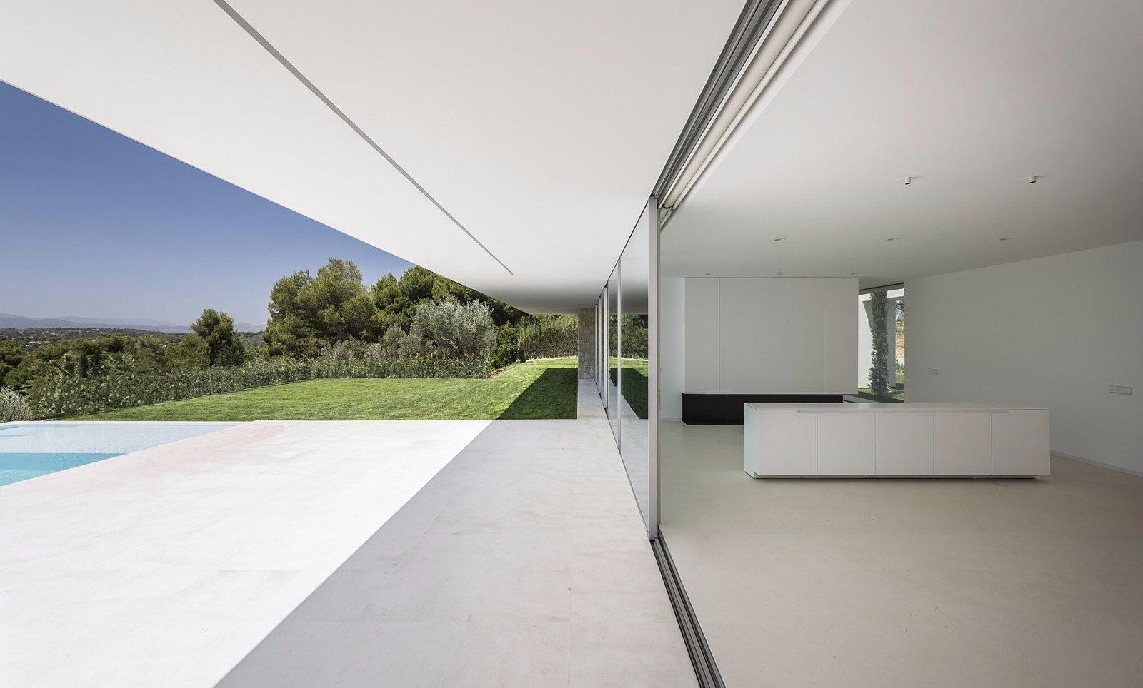 House Olive Trees: modern minim - minimalissimo | ello
