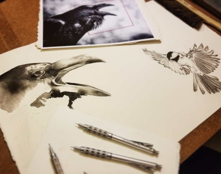 Graphite + sumi ink. Work progr - mariesakdale | ello
