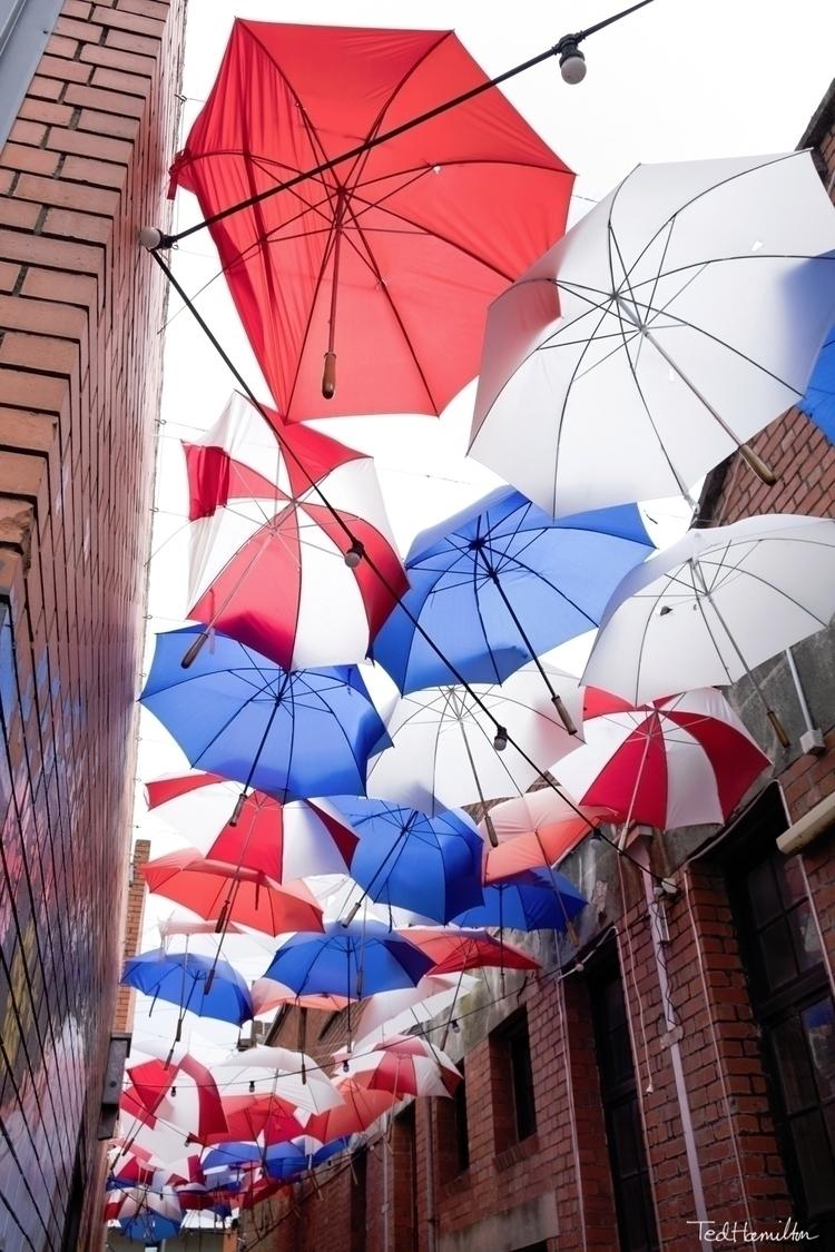 Umbrellas - fujifilm, photography - tedhamilton | ello