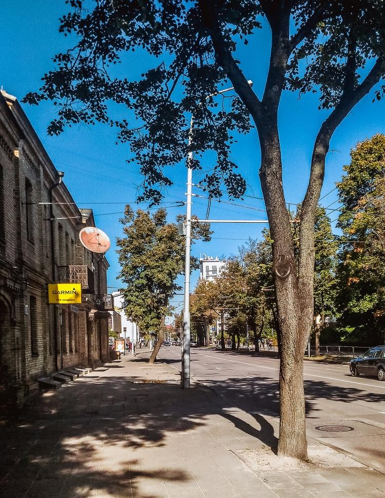 vilnius, lithuania, city, street - beheroght | ello