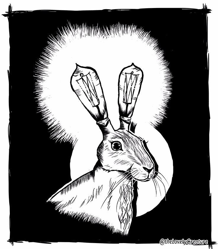 caught headlights - hare, rabbit - thelovelycreature | ello