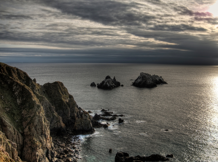 Gannet Rocks - Alderney gannet  - neilhoward | ello