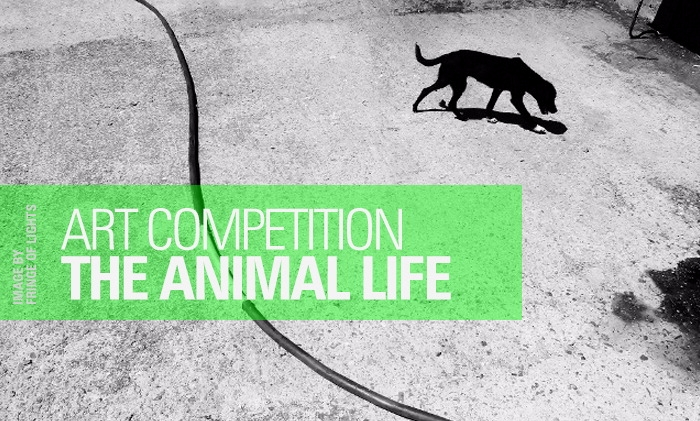 Starting - Animal, Life, Art, competition - artlimited | ello