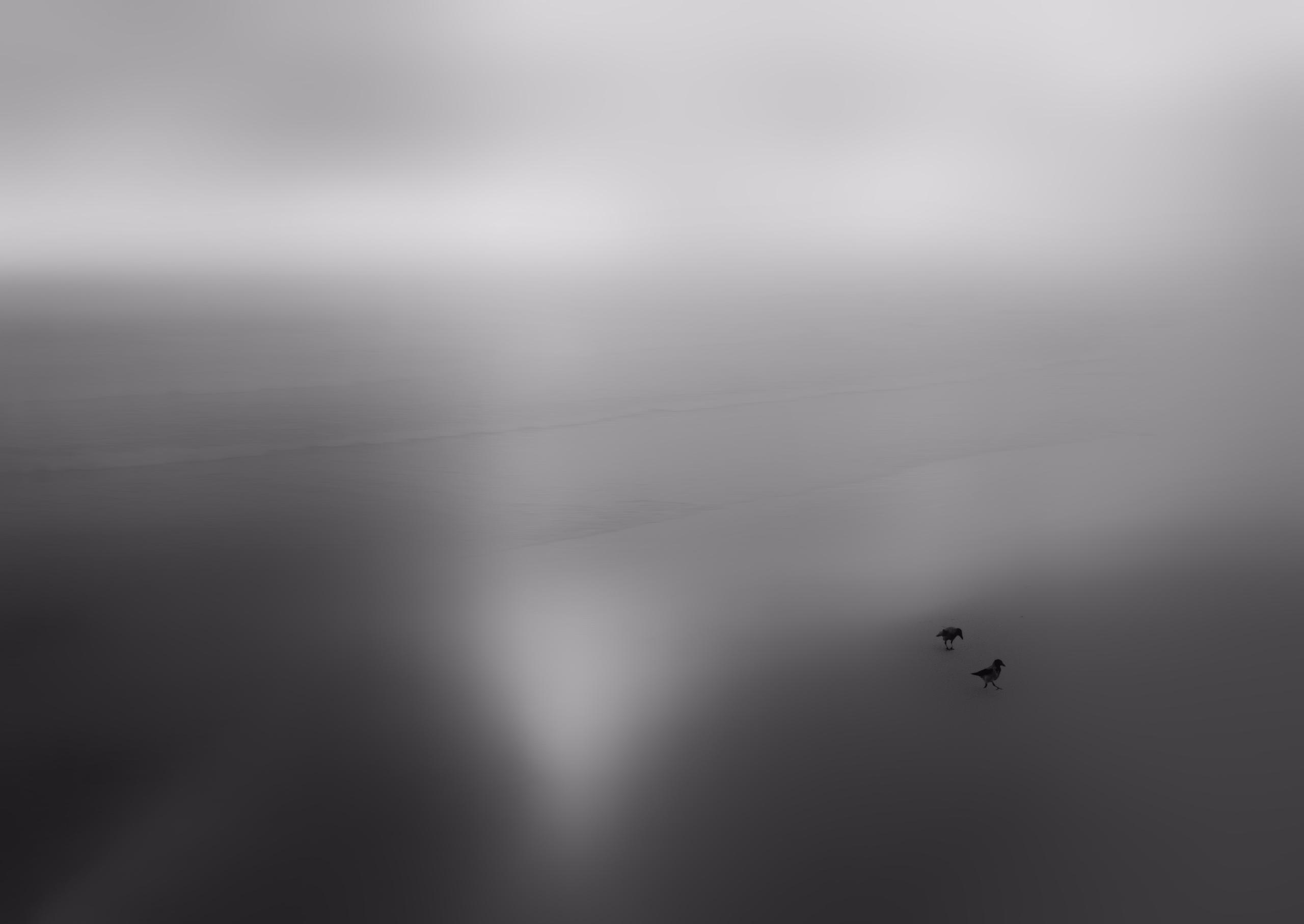 Melancholy - photography, mood, bw - elhanans | ello
