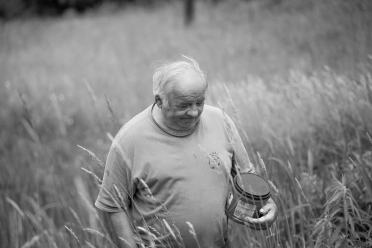 Vermont man walks field feed co - markcollier | ello