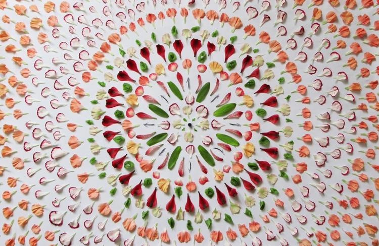 Flower design composition - FlowerDesign - fragosojessika | ello