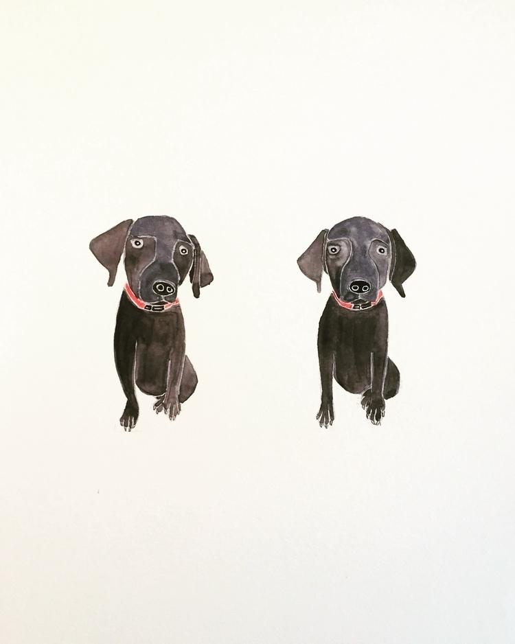 Black lab puppy - illustration, art - igimidraws | ello