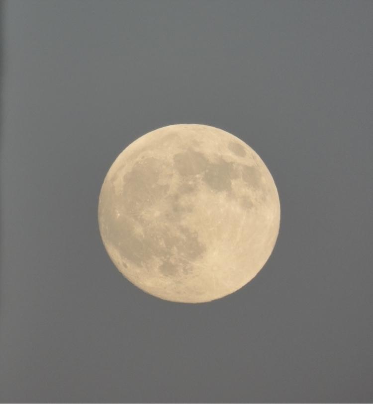 Moon - nelviaa | ello