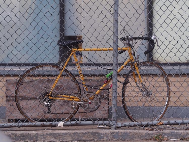 Mo Fuji - NYCSteelponies, NYC, NewYork - nycsteelponies | ello
