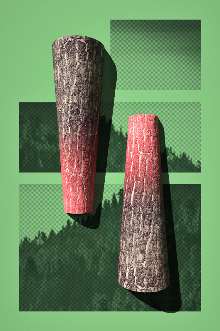 Forest Trees - Poster, 2D, 3D, Illustration - aaaronkaufman | ello