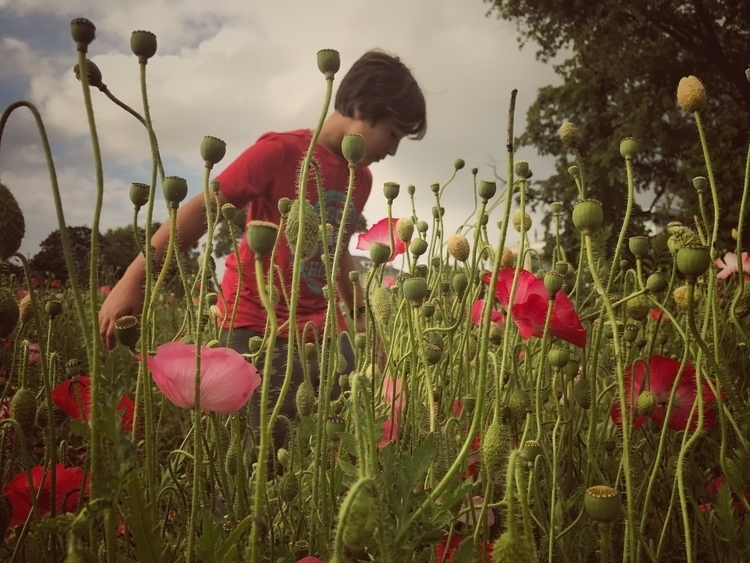 boy poppies // cotswolds june 2 - tripp3 | ello