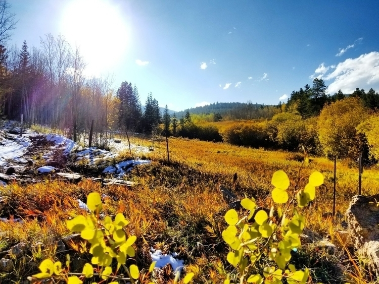 Gorgeous fall day hills - fallvibes - midnightjo | ello