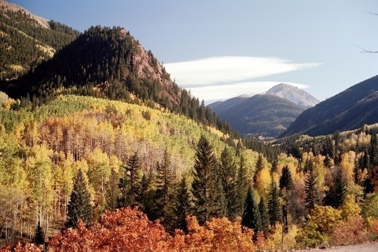 Aspen, Colorado Fall 1977 Autum - nickdewolfphotoarchive | ello