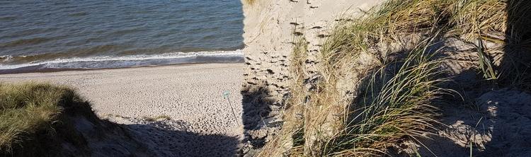 Ein schöner Tag Strand - knopper | ello