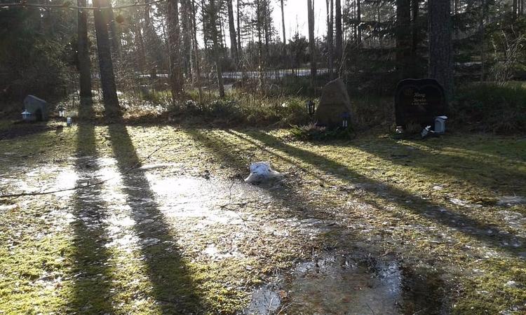 Vissa gångar är rätt vattensjuk - skogskyrkogardar | ello