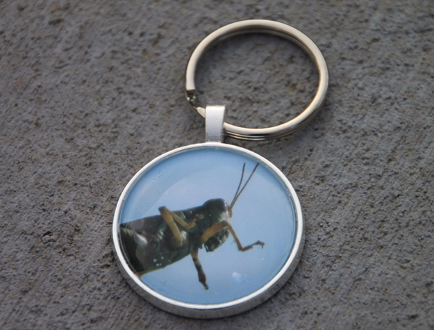 Grasshopper Key Chain, Holla Be - etbtravelphotography | ello