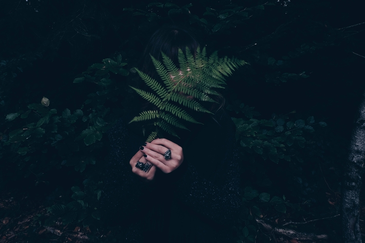 dark, nature, photography, fern - blackwyrt | ello