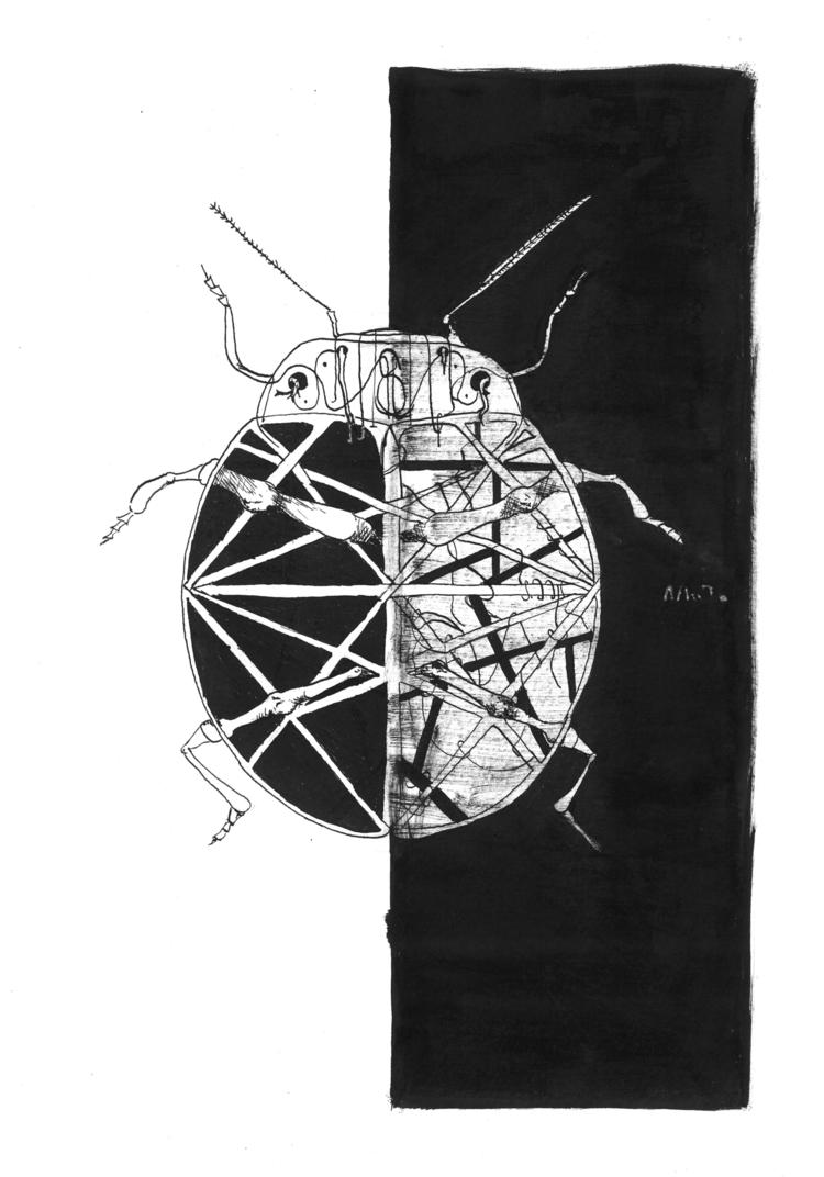 Hybrid beetle Ink feather paper - amandaobara | ello