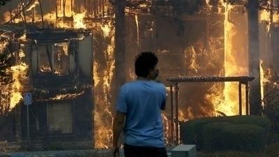 Santa Rosa burning - anarcho-vegan | ello
