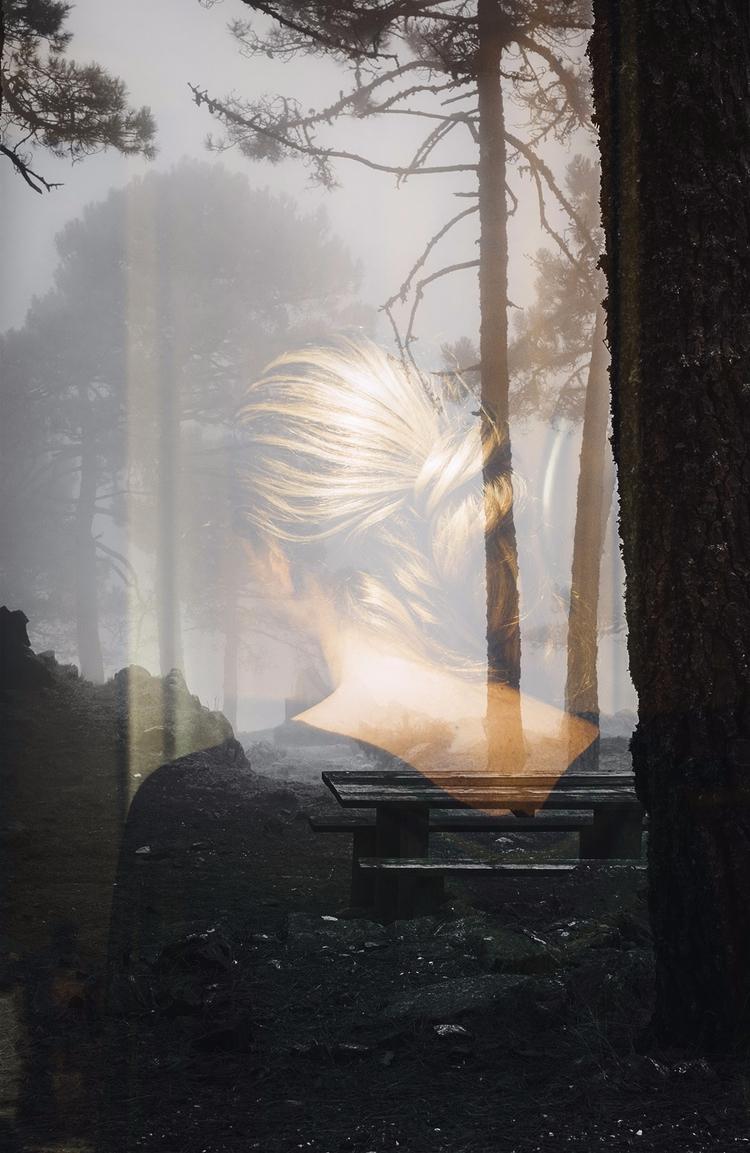 fog - foggy, blonde, autumn, otoño - natxodiego | ello