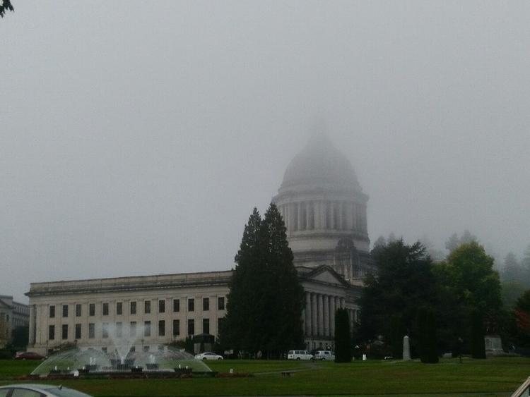 fog landscape - fall, washington - silly_apeman   ello